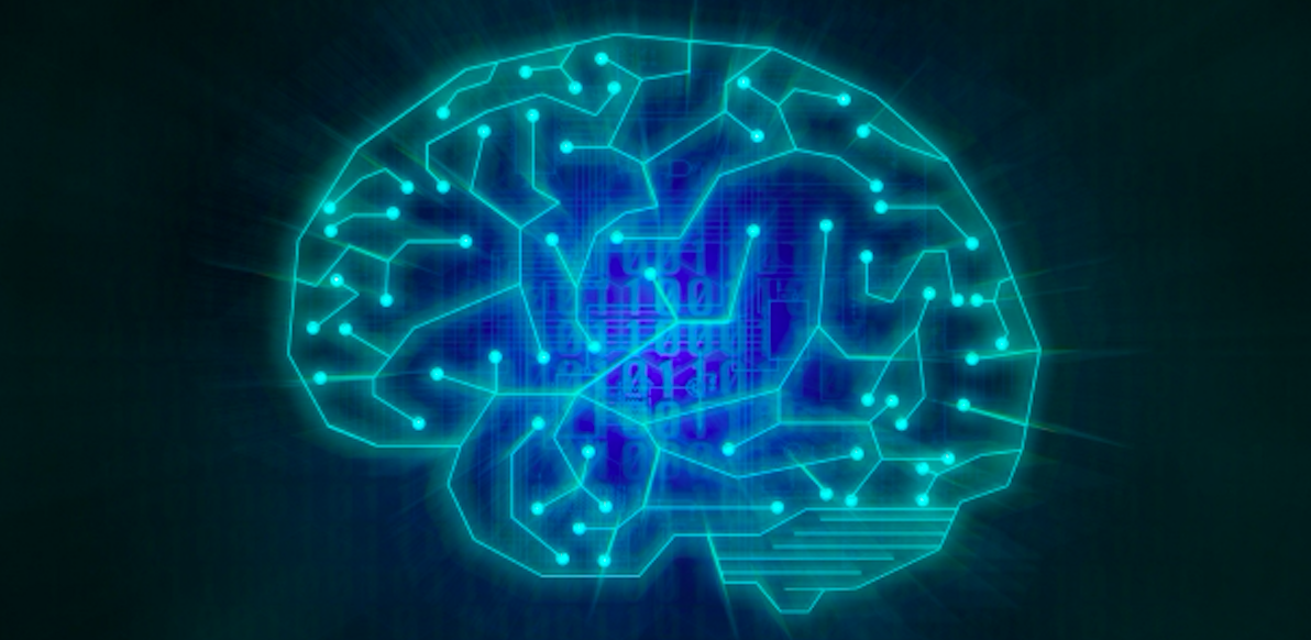 【リハビリ職におすすめ】脳画像の見方がわからないならこの2冊から!!